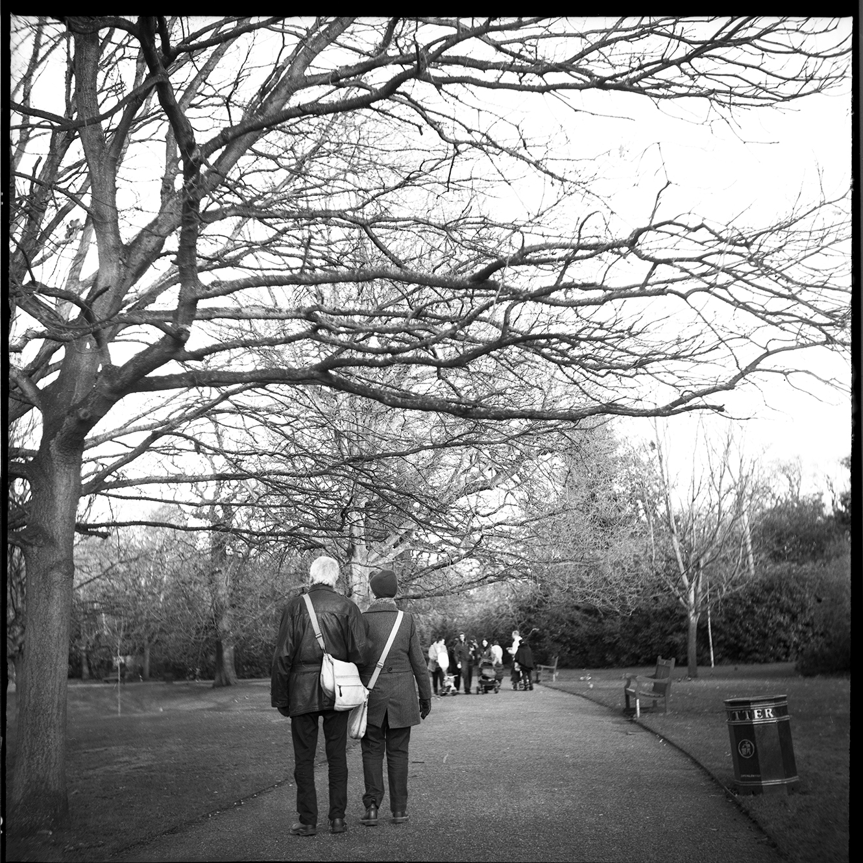 Greenwich park-MF472 copy.jpg