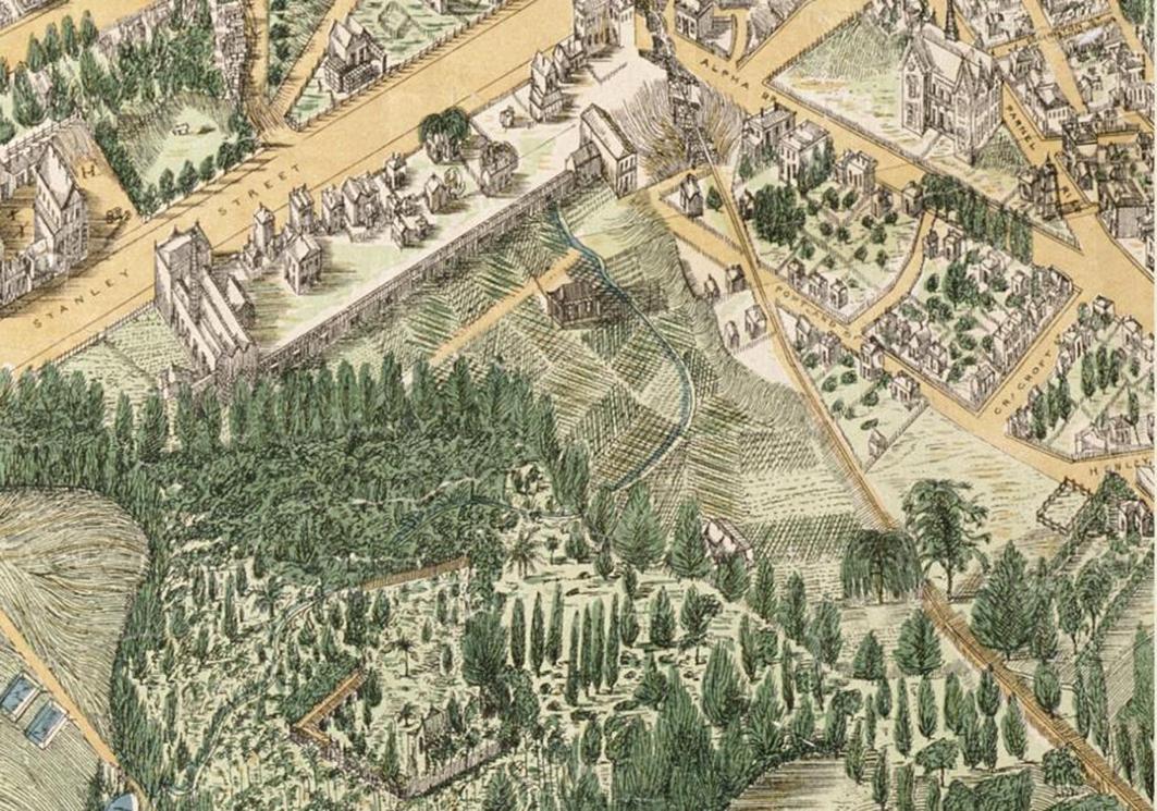 George Treacy Stevens 1886 NZ Map 374.jpg