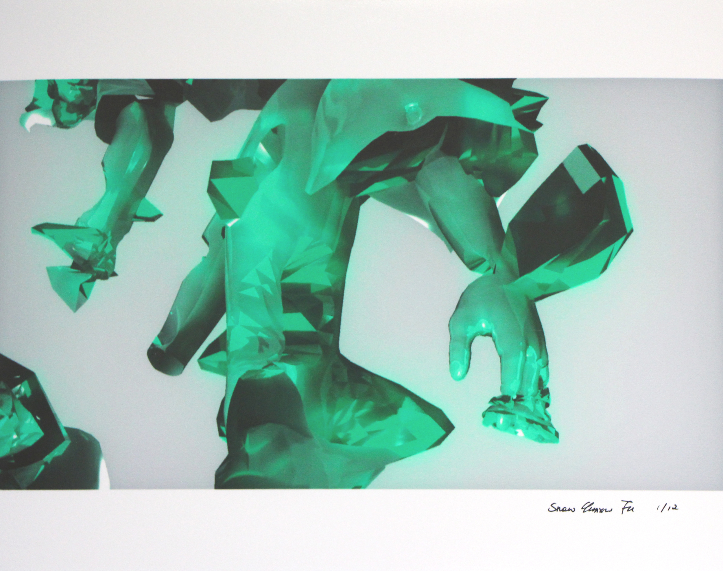 Snow Yunxue Fu    The percept, 2014   inkjet print on llford smooth gloss paper    6 x 11 inches    edition of 12