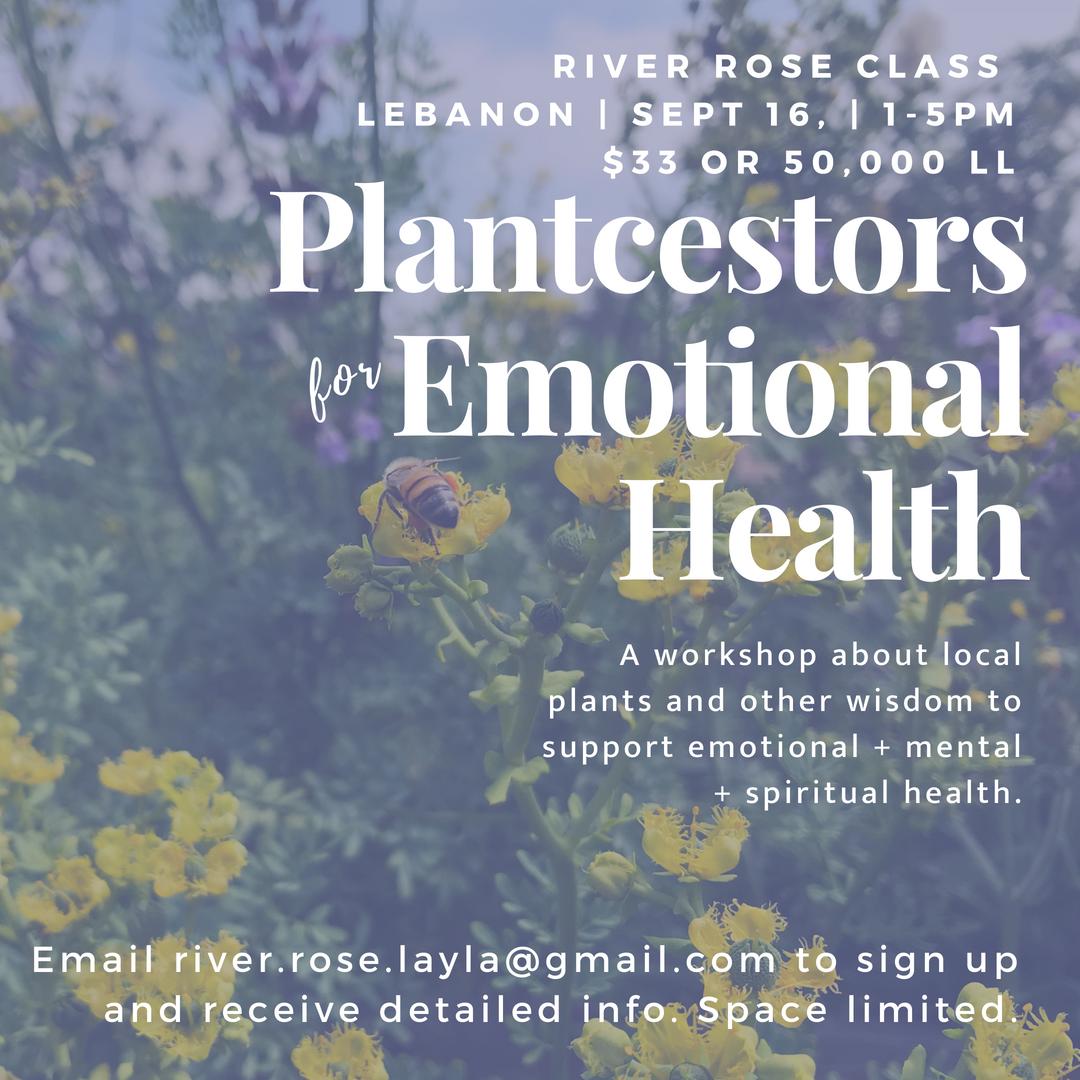 Plantcestors Emotional Health.png