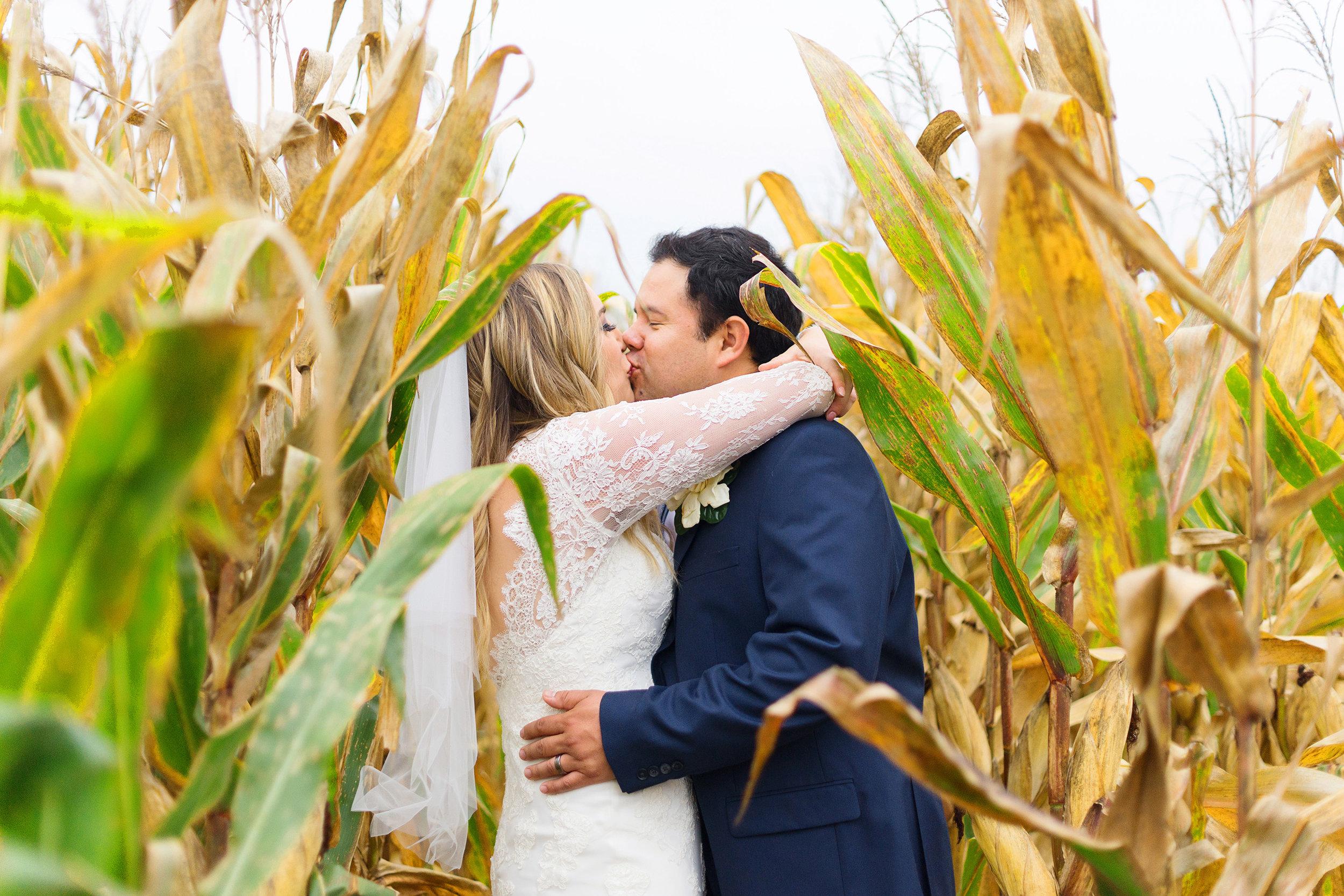 Corn field bride and groom wedding photos