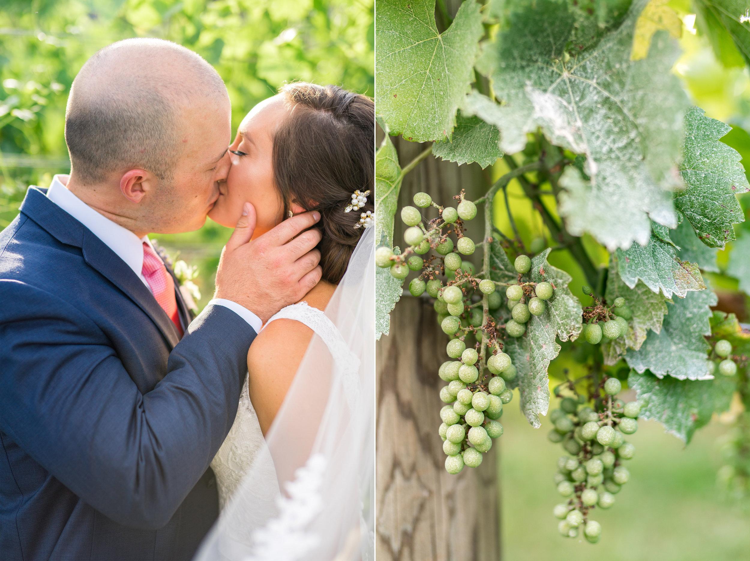 Vineyard wedding in Thurmont Maryland Springfield Manor