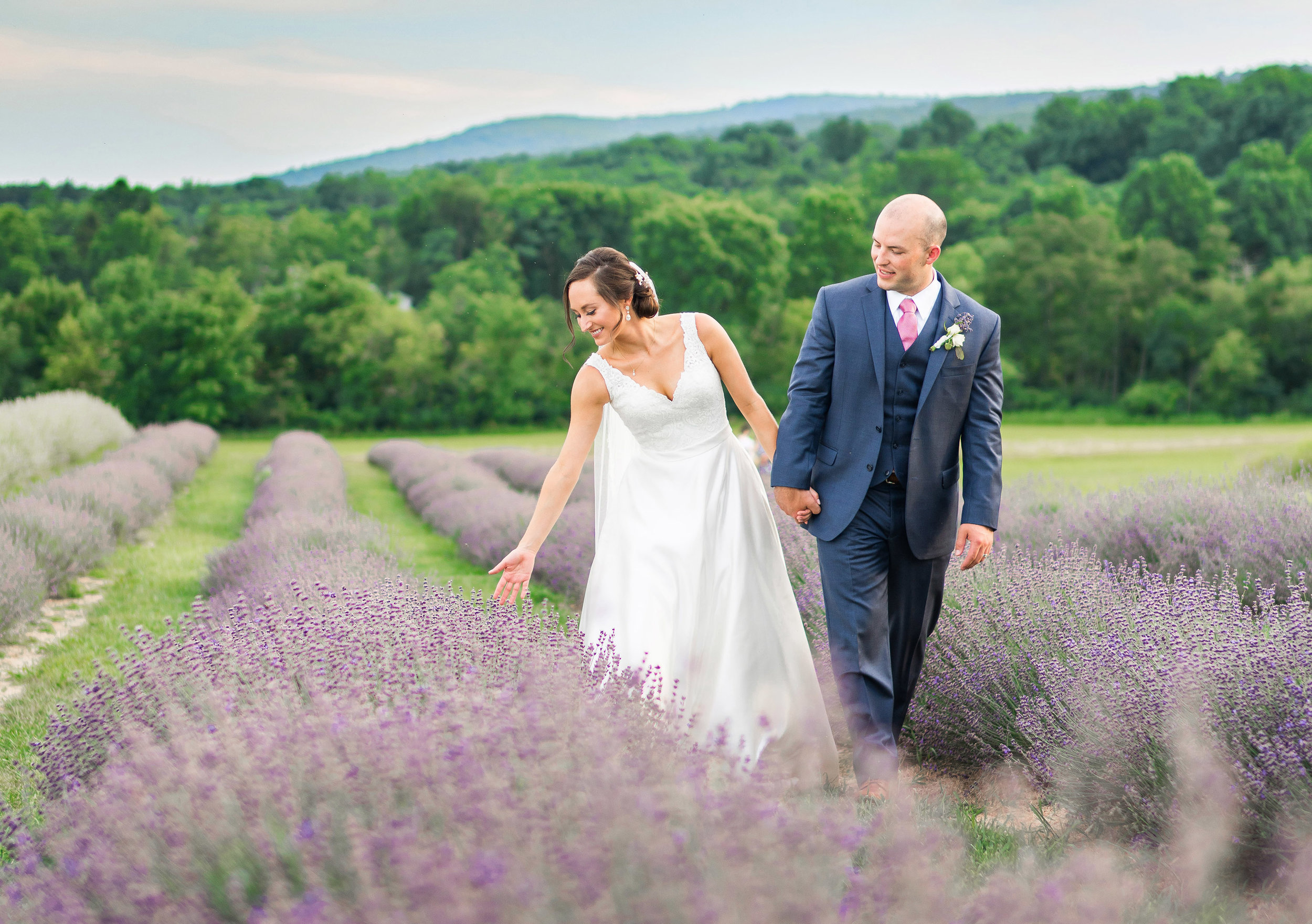 Springfield Manor Winery Distillery lavender fields with bride and groom