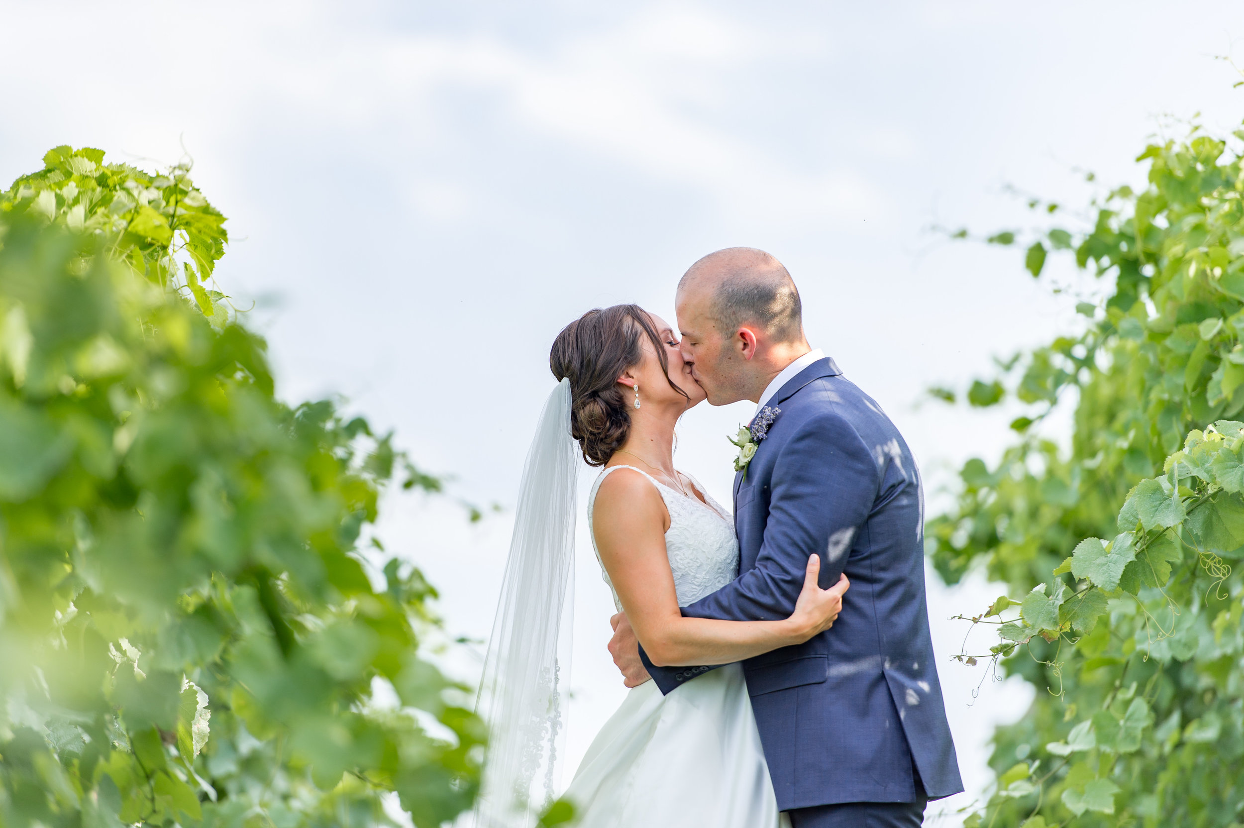 Bride and groom kissing in summer vineyard