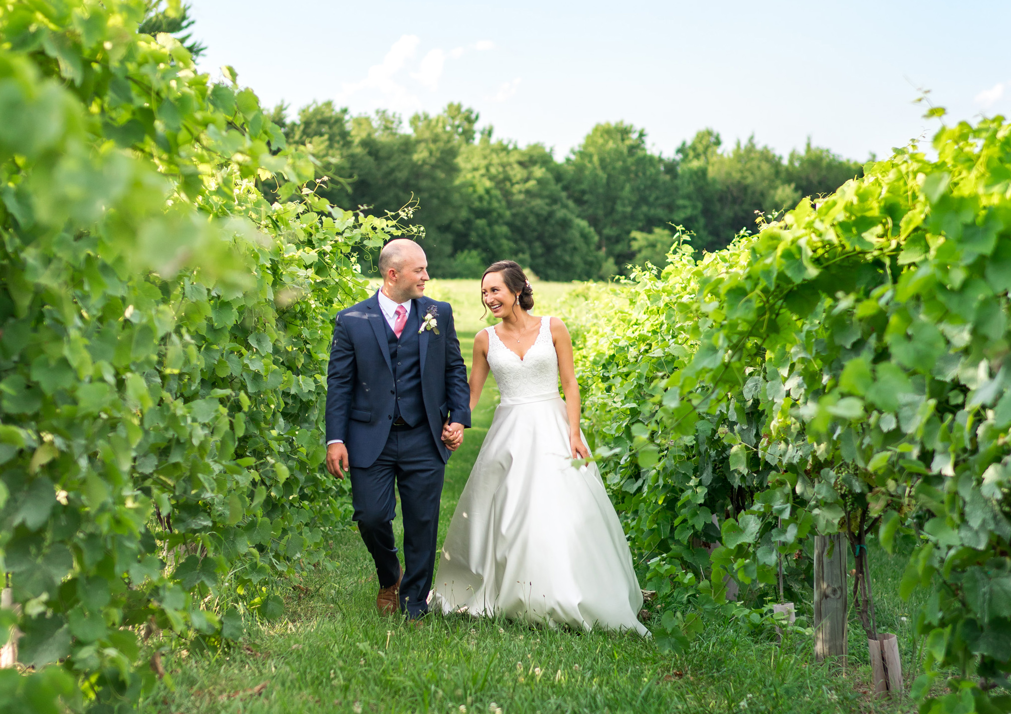 Winery and lavender field wedding in Virginia and Maryland