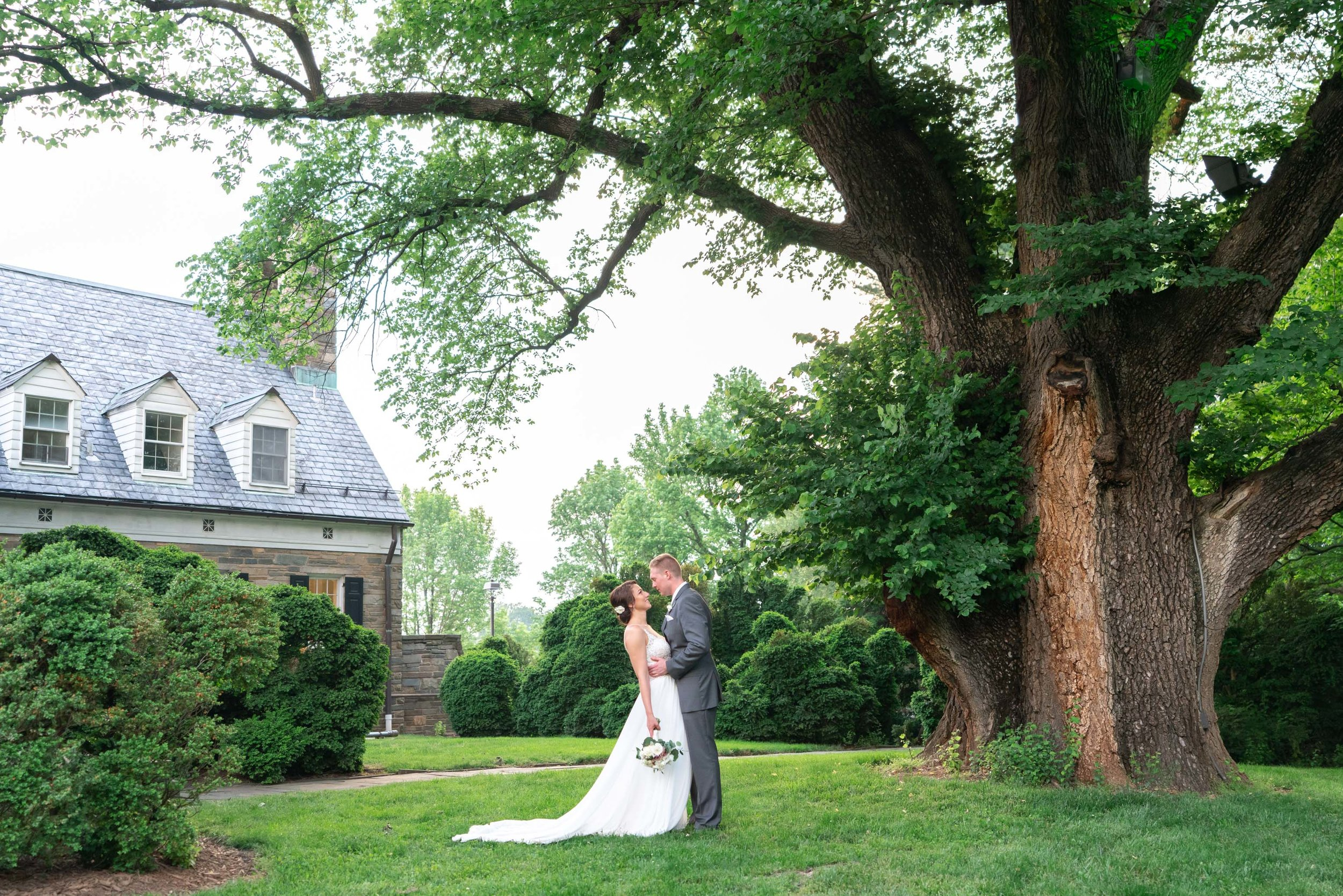 Bride and groom kiss under large tree with Glenview Mansion in the background