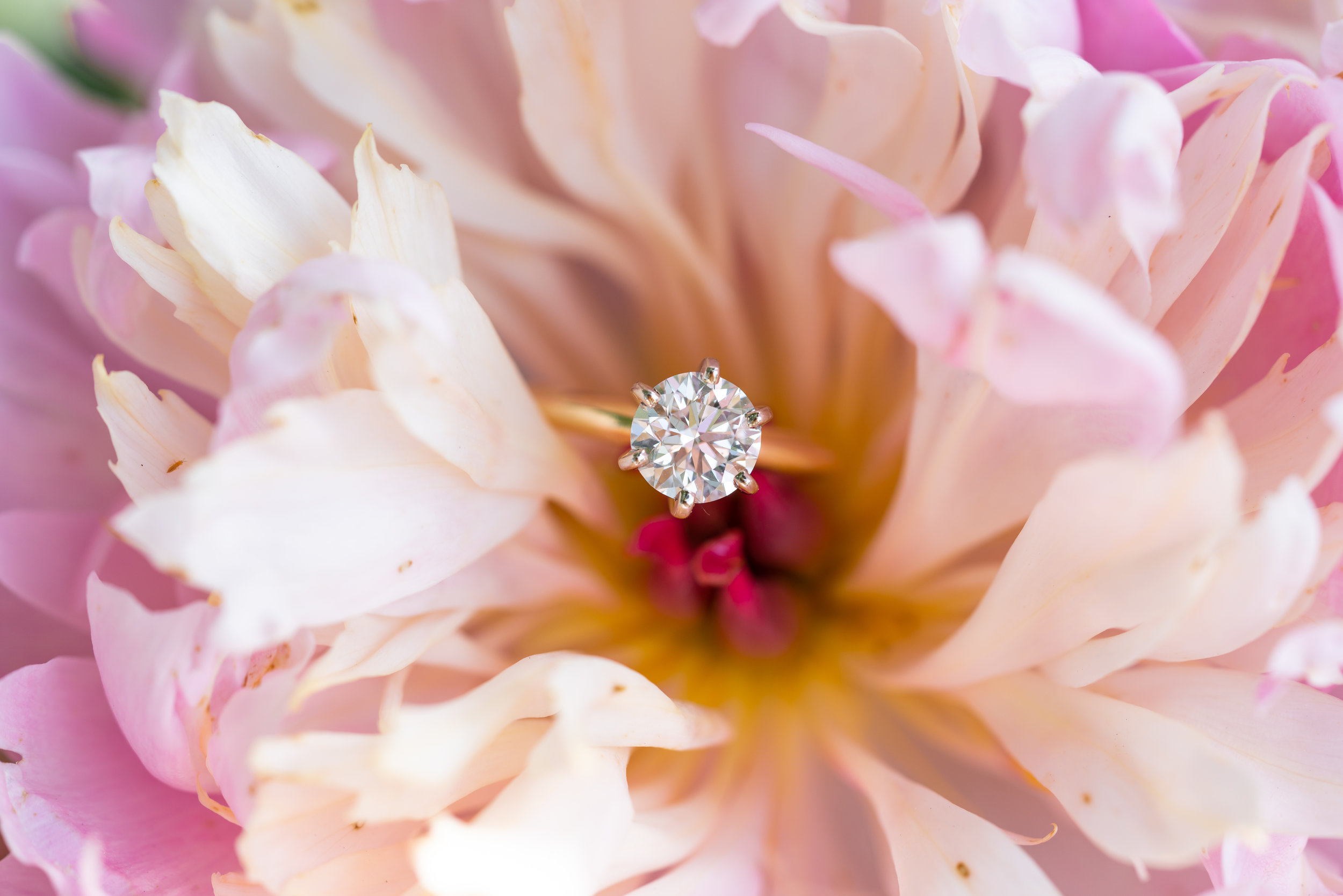peony ring photo with six prong round solitaire