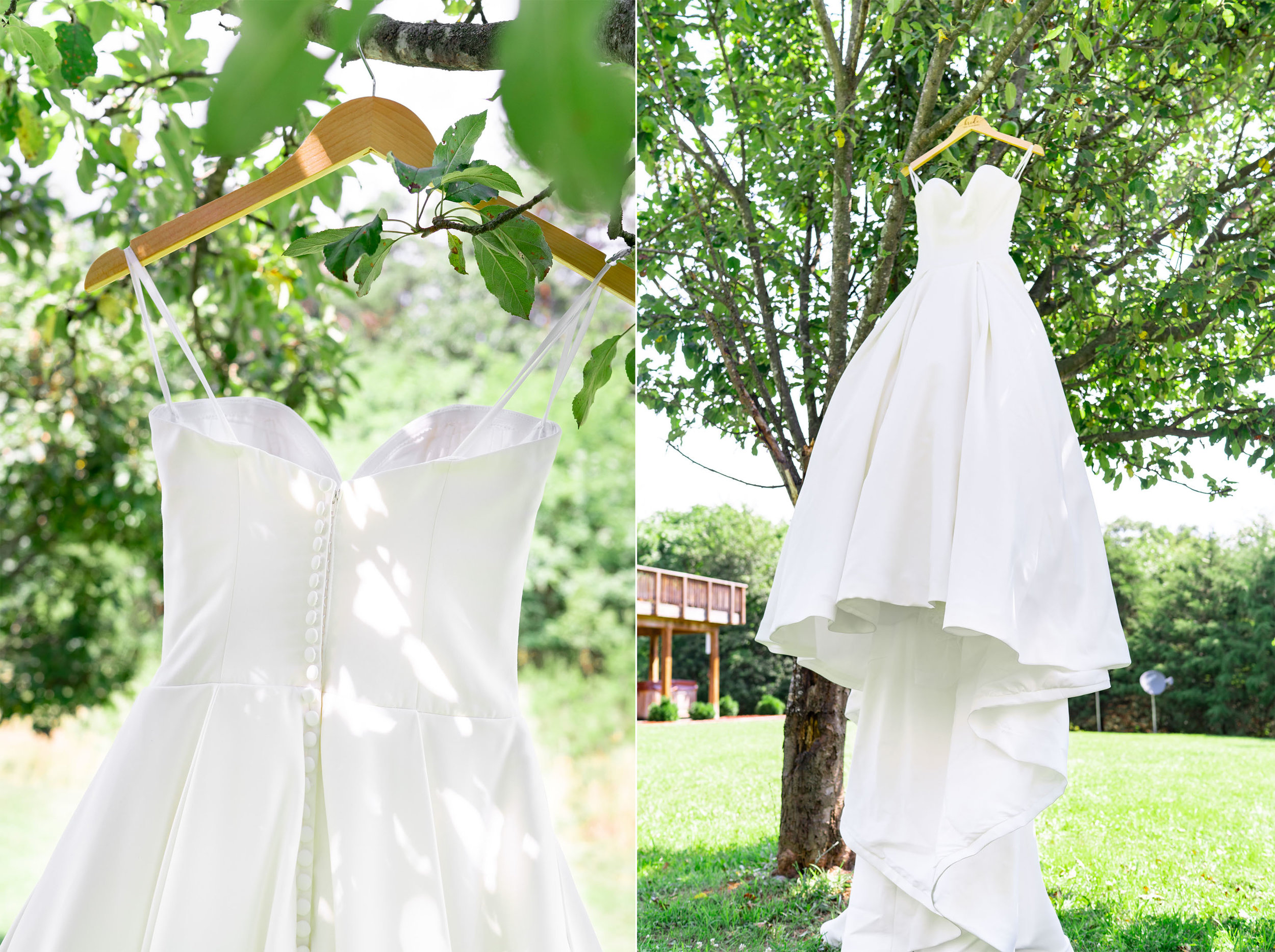 Gown hanging from a tree at Shenendoah cabin villa wedding