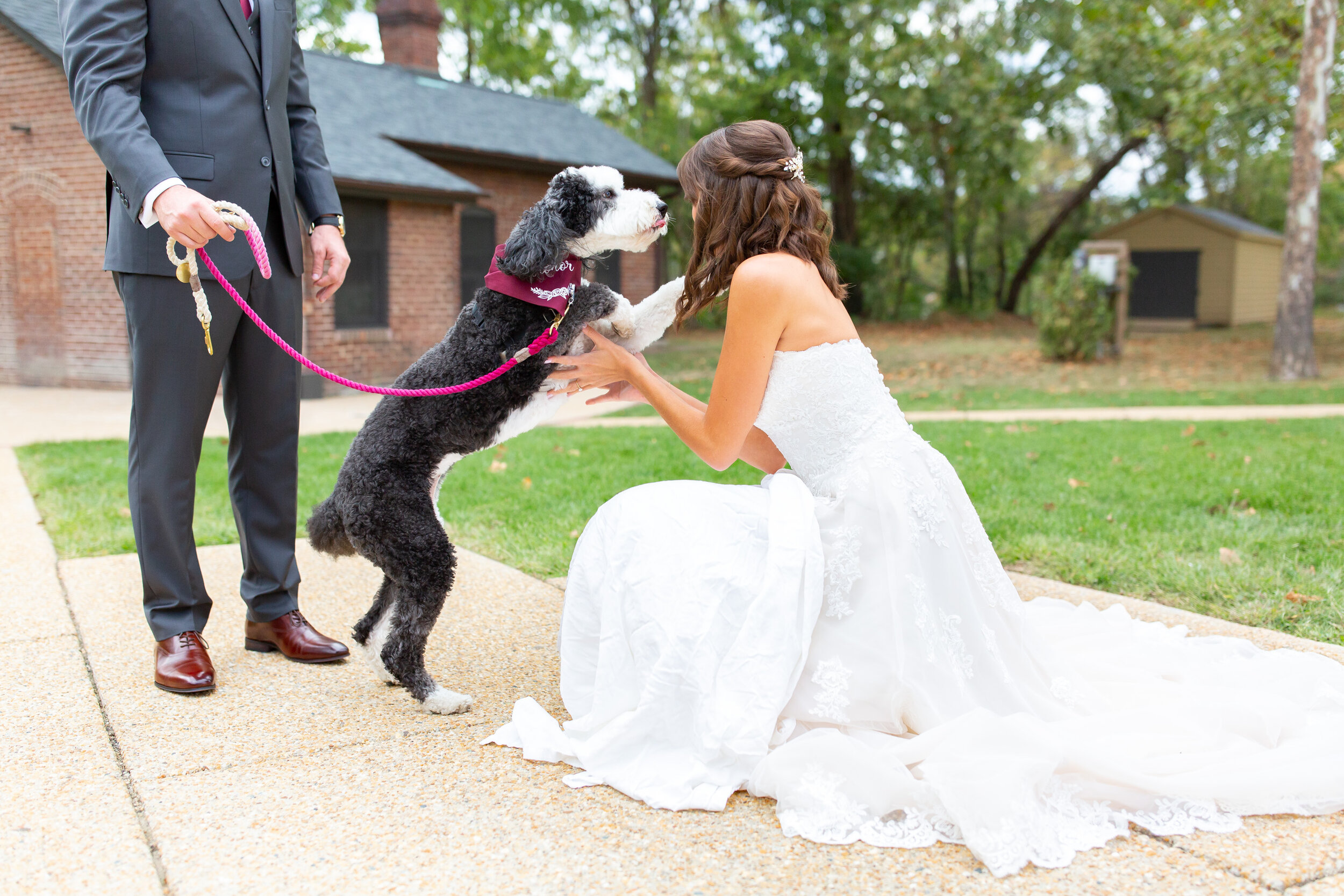 Bride in Stella York 6776 having a first look with her sheepadoodle