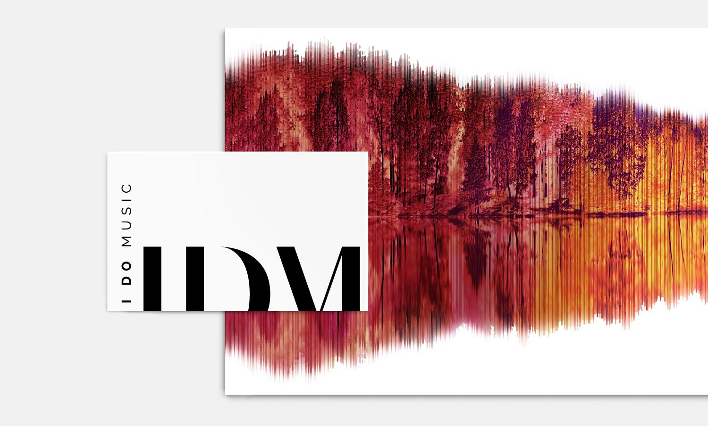 IDM-2.jpg