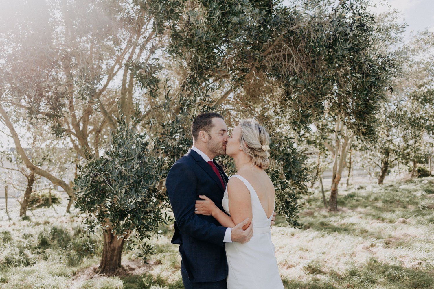 Wedding first look photos in olive grove
