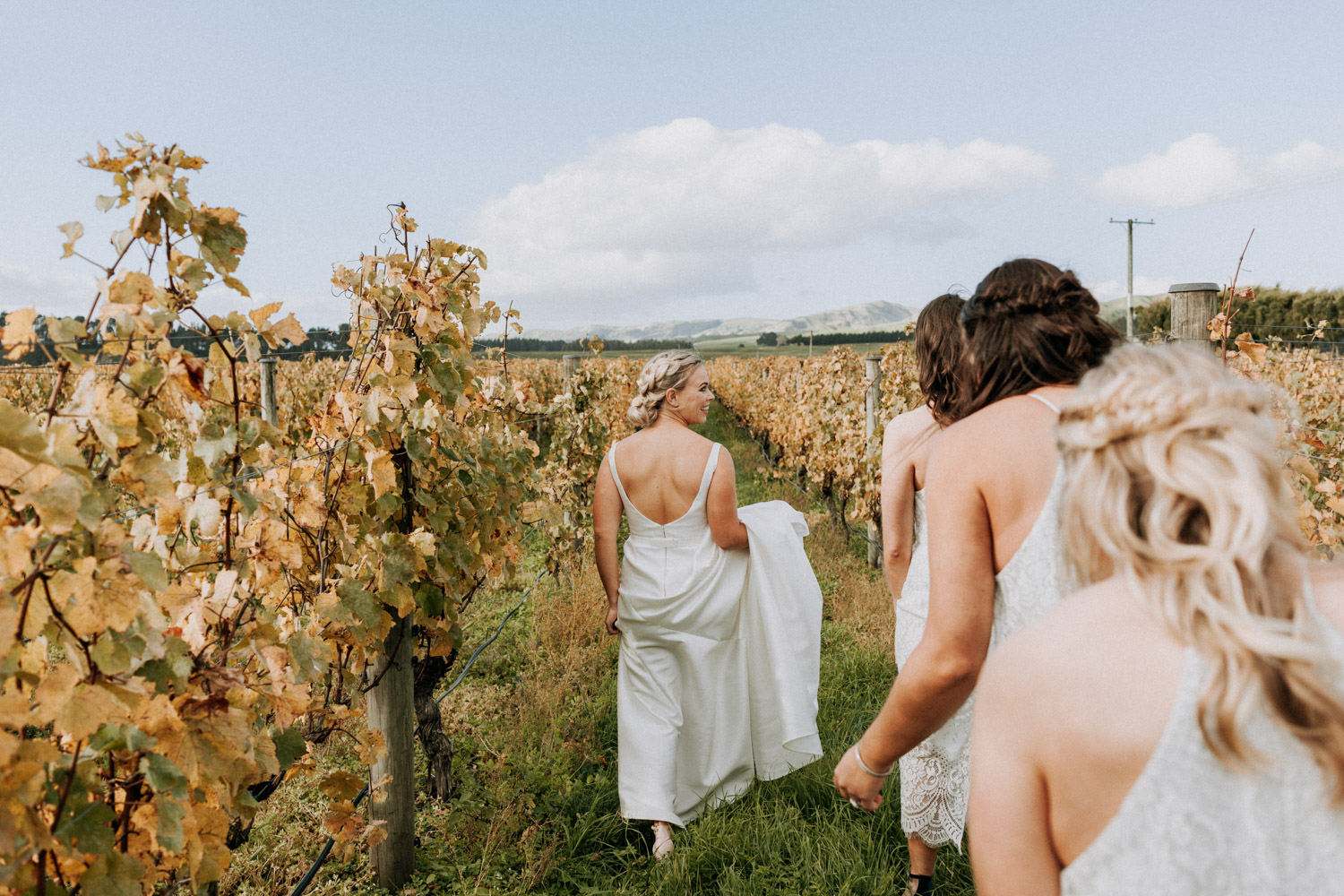 Bridesmaids walking through Martinborough vineyard