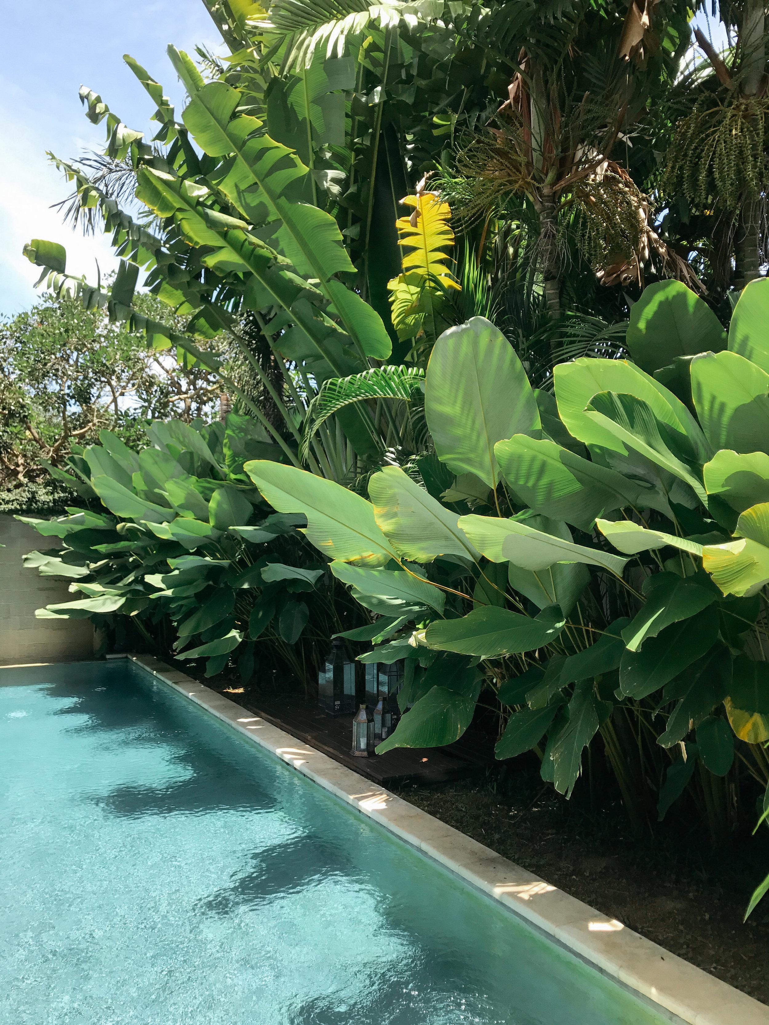 Carley Rudd Photography Villa Tilu Bali-