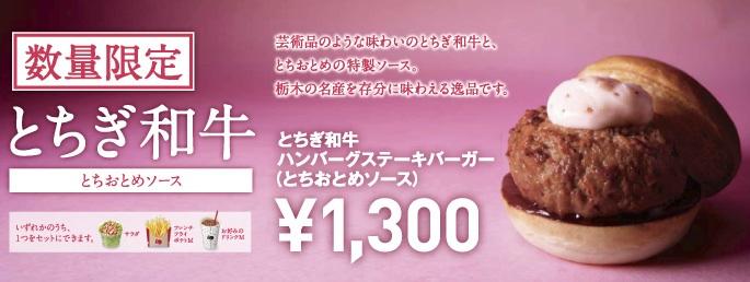 Den stora konkurrensen på krogsidan i Japan leder till vad som förmodligen är den mest kreativa restaurangnäringen i världen, sett i snitt. Även de billigare kedjorna måste kämpa för att hänga med i svängarna. En häftig nyhet garanterar spaltmetrar i pressen i det matgalna Japan.