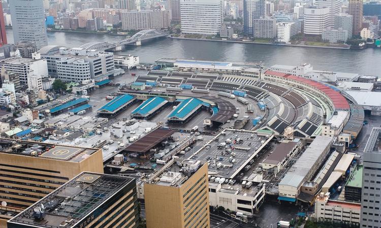 Fiskmarknaden i Tsukiji idag.. Den planerade flytten som skulle ha varit klar i november 2016har nu skjutits upp.  Foto: GNU license