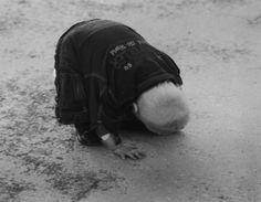 Tom Sandberg, Untitled, 1996