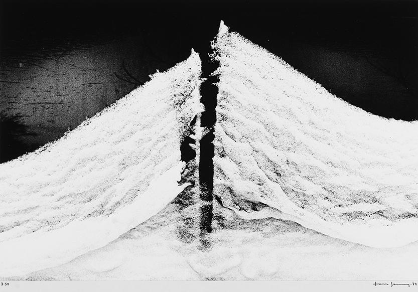 Tom Sandberg (1953-2014)  Untitled , 1979.