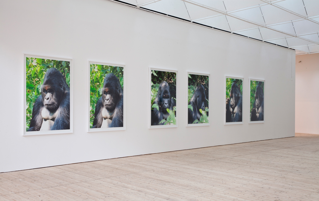 Both images are installation view of Sandra Mujinga's work at  Subjektiv , Malmö Konsthall, taken by Helene Toresdotter,