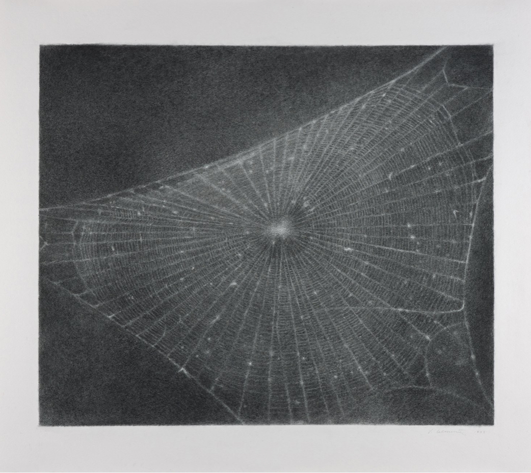 Vilja Celmins, Web #1, 1998. Picture from  SFMoMA .