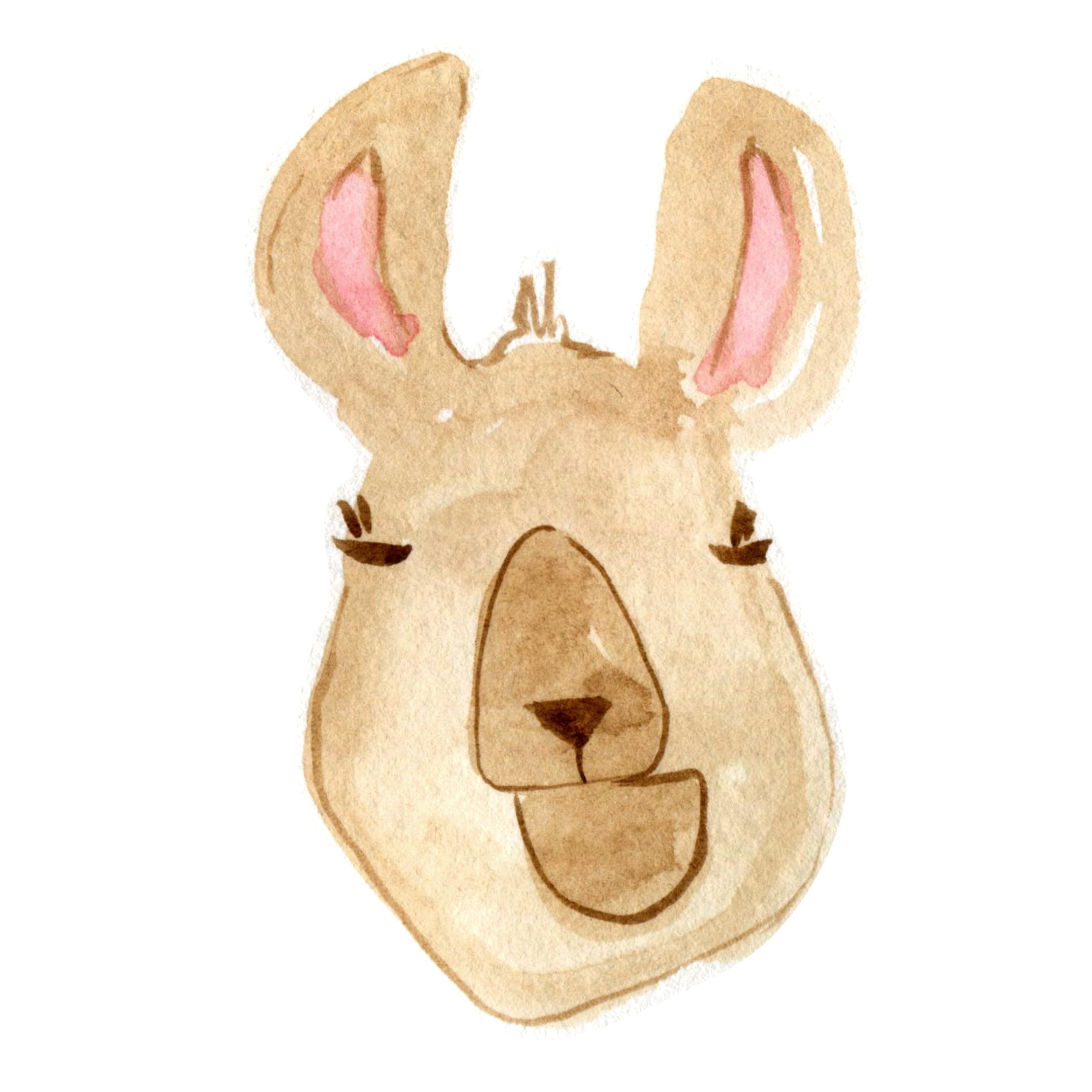 Llama dude.