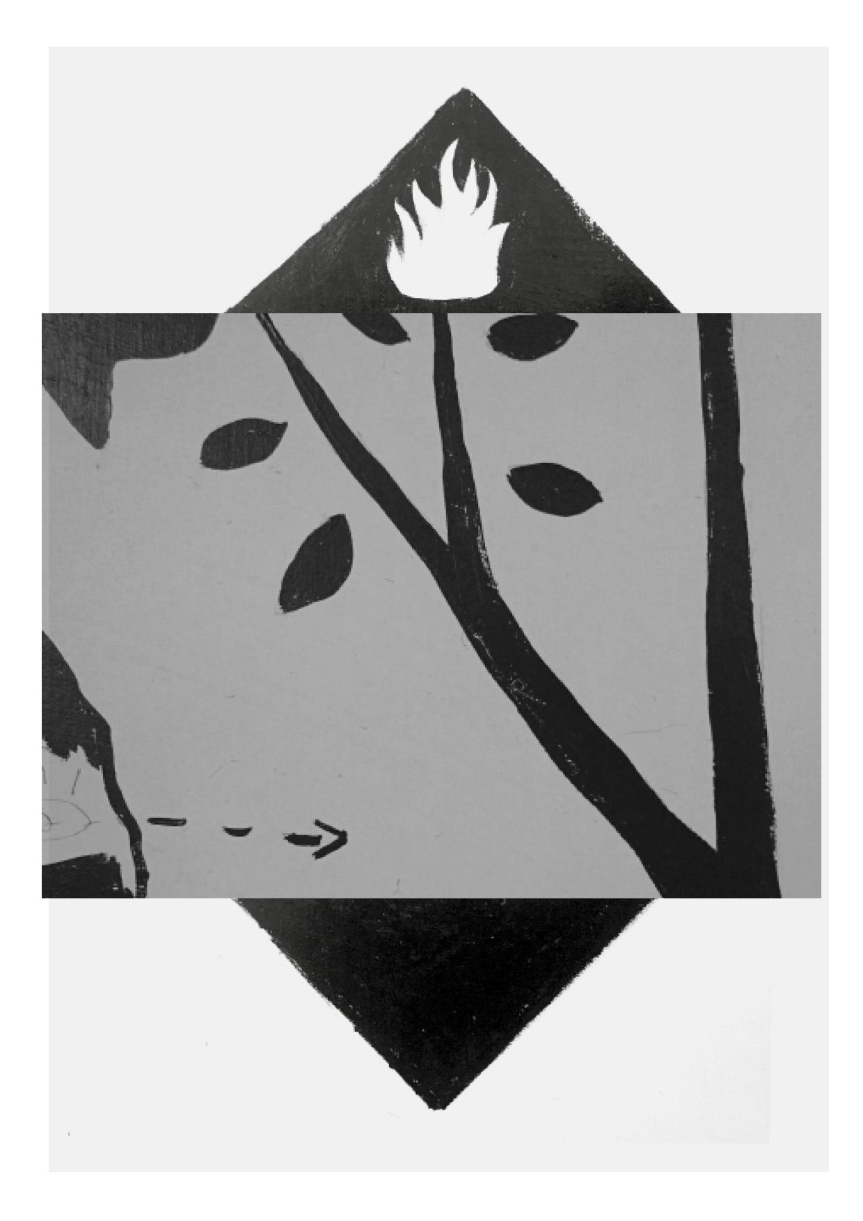 SNUFF ZINE-foxes-multistorey2.jpg