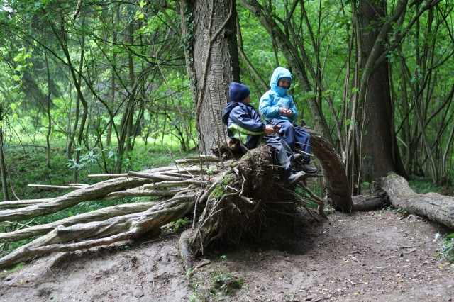 Two-kids-on-tree-640x426.jpg