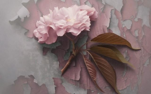 Hyperrealistic-Paintings-by-Patrick-Kramer_1-640x641.jpg