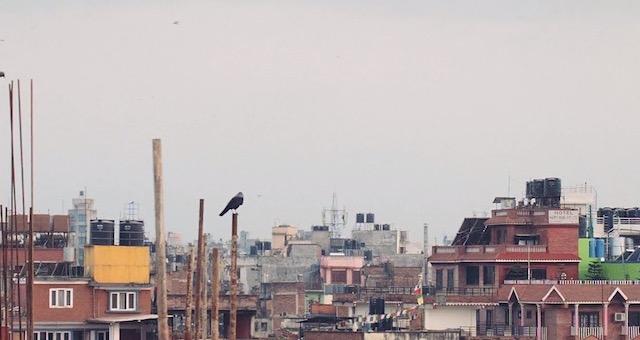 Nepal-Times1.jpg