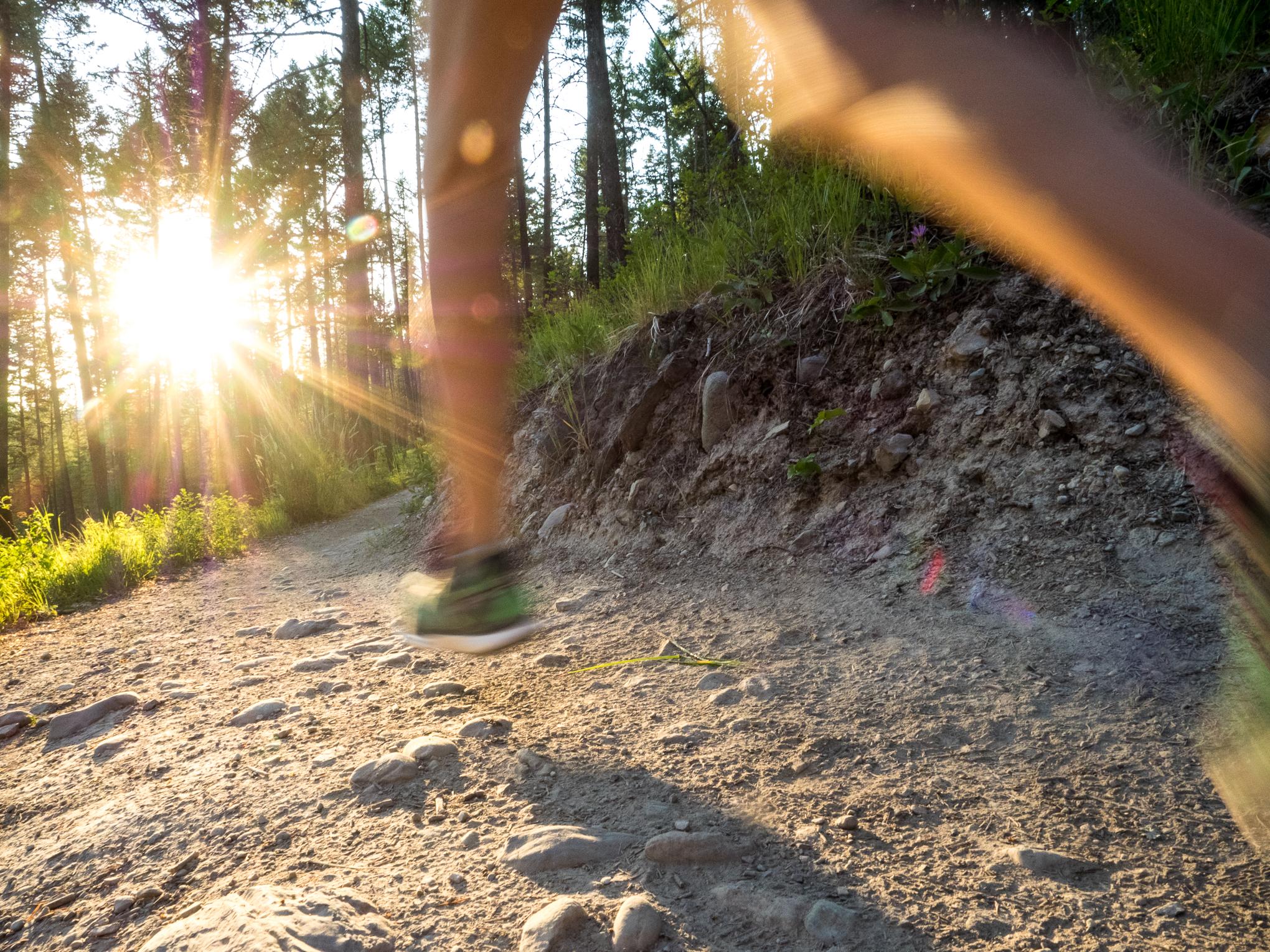 RIDGE-Academy-trail-running-athlete-training-semester