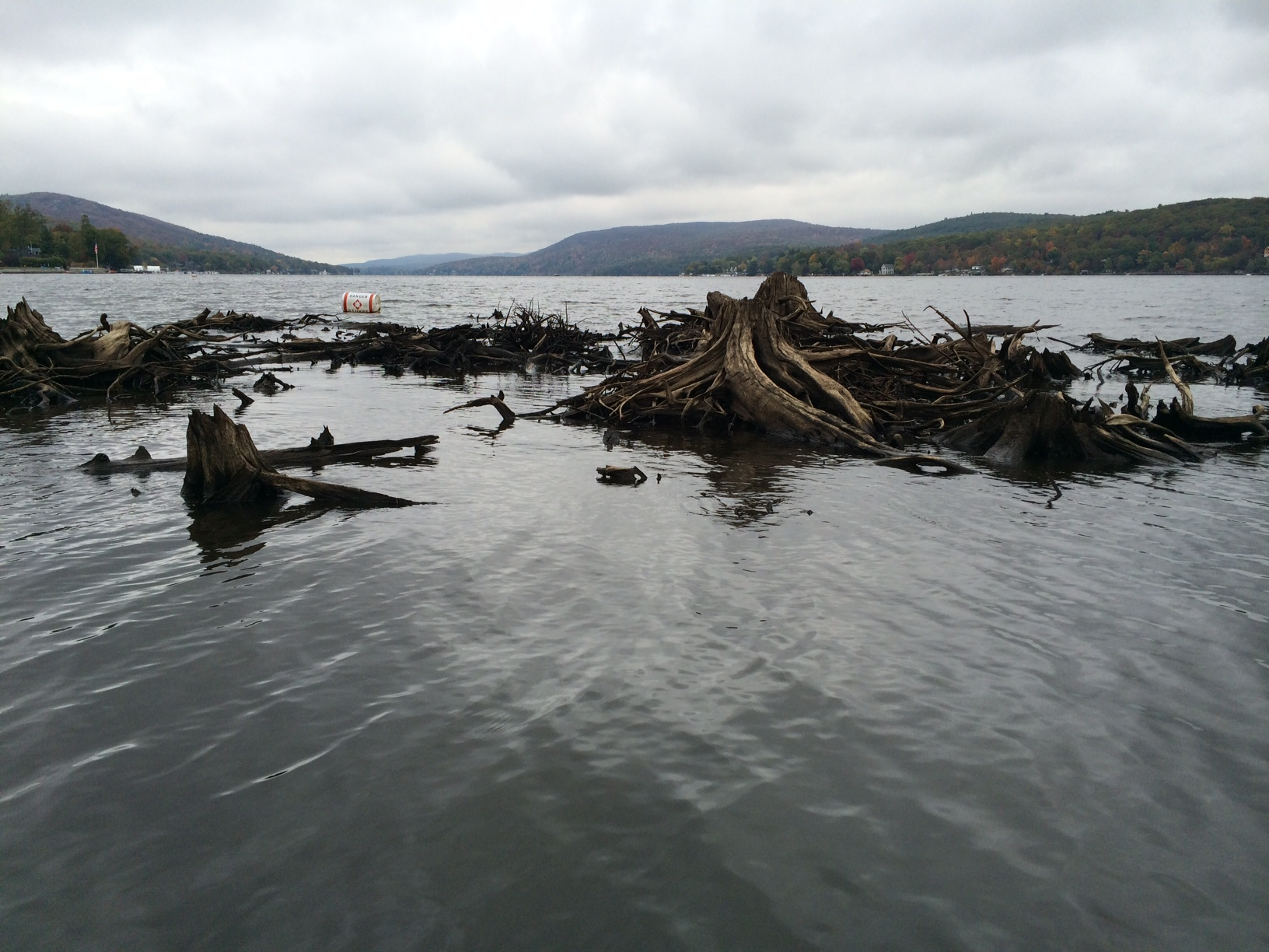 Navigational Hazards - Removing floating stumps fields is one way the commission works to insure that Greenwood Lake is safely passable by all watercraft. Also, by clearing areas of the lake, such as Belcher's Creek, by removing weeds, sediment, and debris is another way the commission will improve water quality throughout the lake.