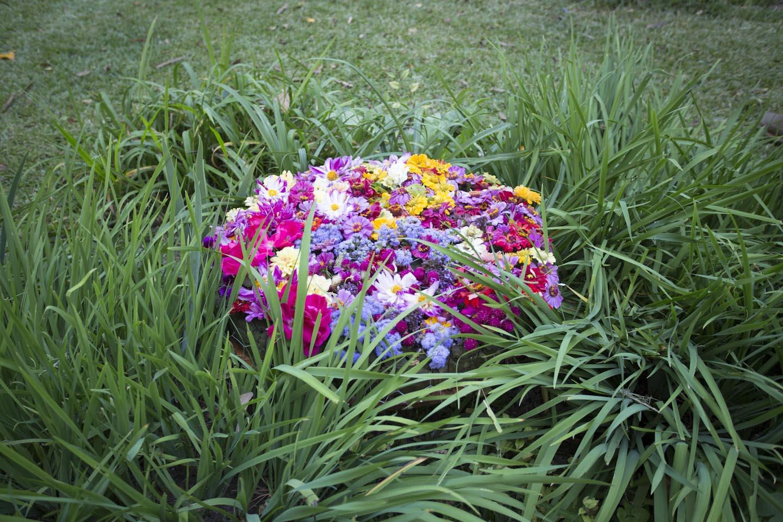 anna belle flora medallion-0822.jpg