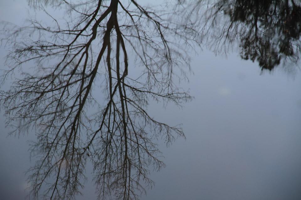 KB_reflection-7376.jpg