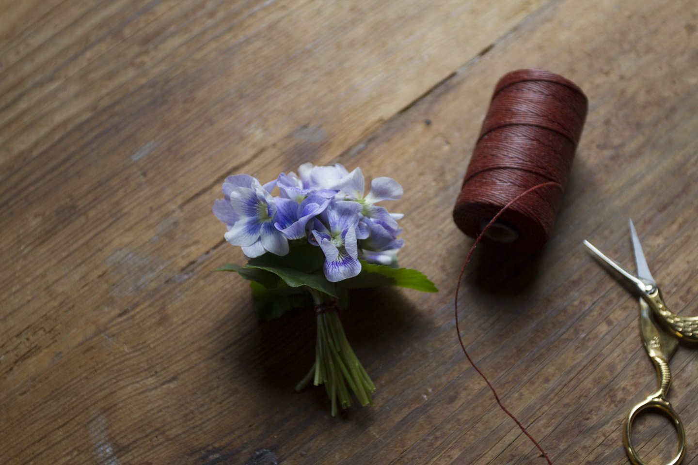 violet posey-3599.jpg