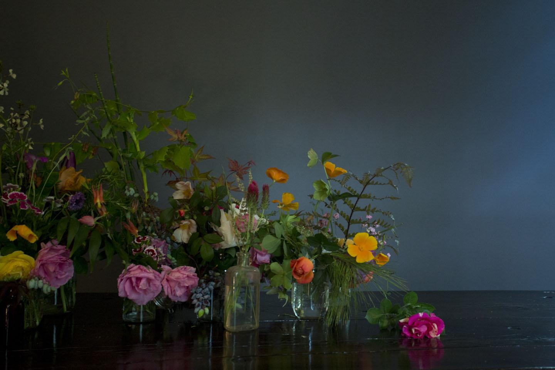 seasonal bloom-6734.jpg