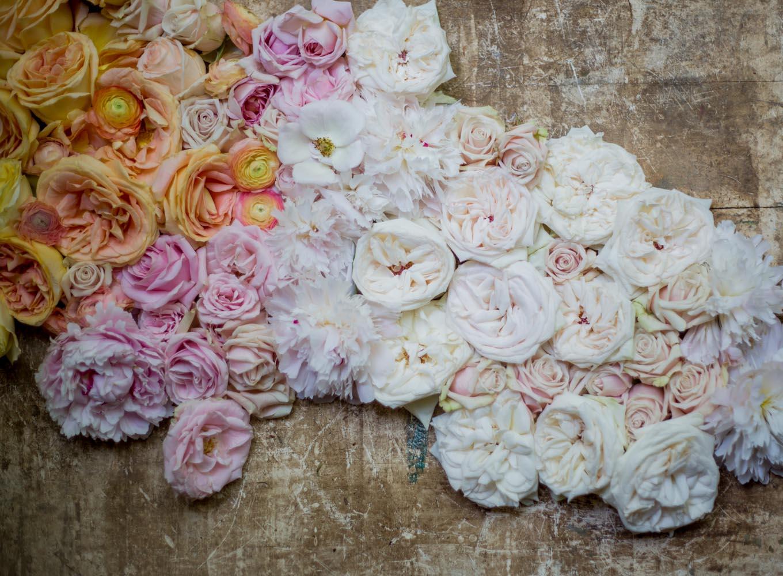 ombre_roses-9256.jpg