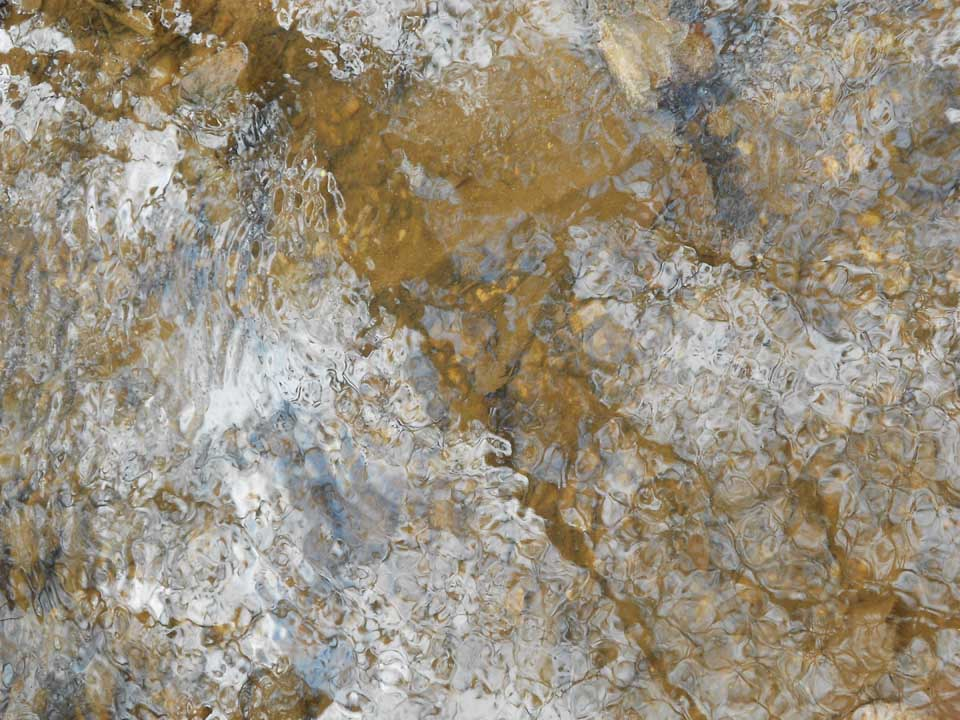 RW_creeks-1372.JPG