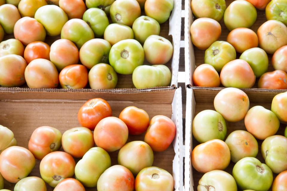 KB_creole_tomatoes-3548.jpg