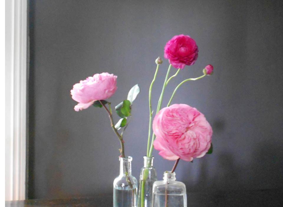 RW_roses.jpg