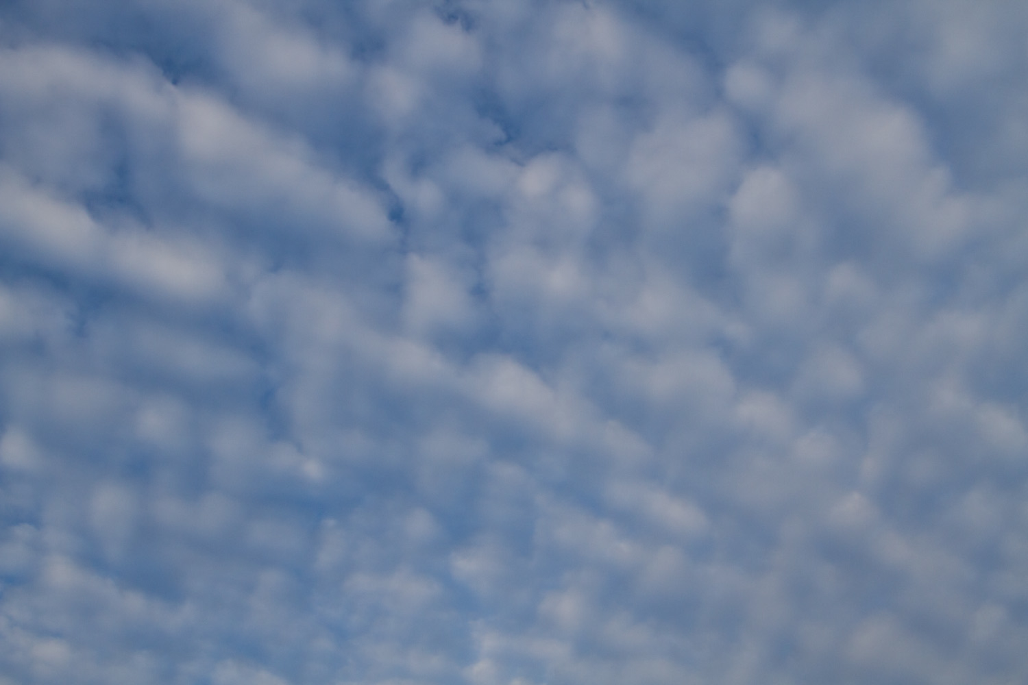 daily beauty_blue sky and clouds-4675.jpg