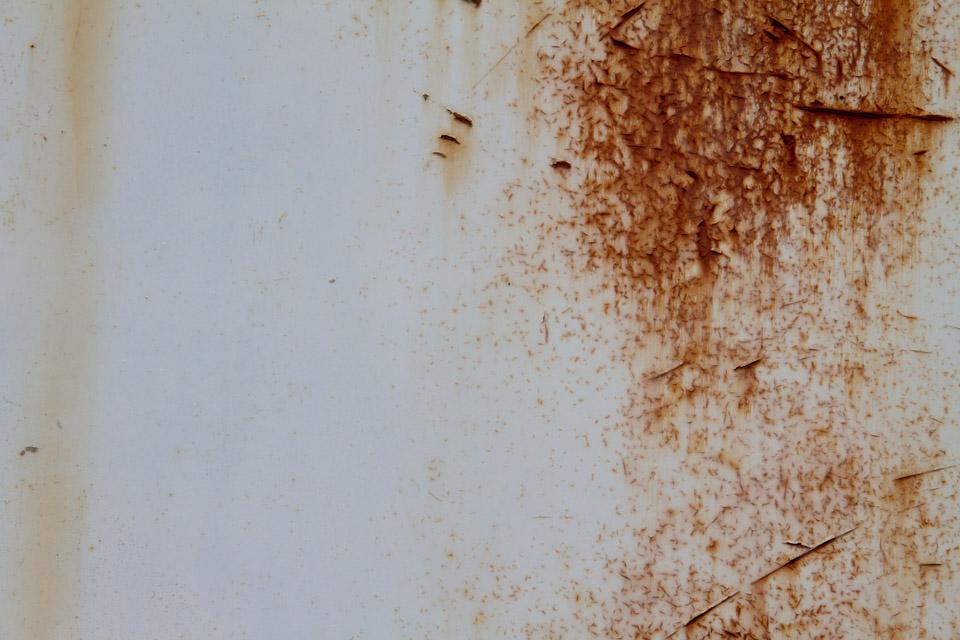 KB_whites-rusts-9151.jpg
