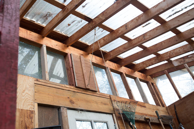 lees_homemade_greenhouse-6407.jpg