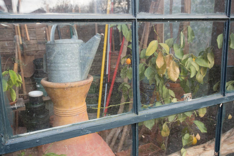 lees_homemade_greenhouse-6398.jpg