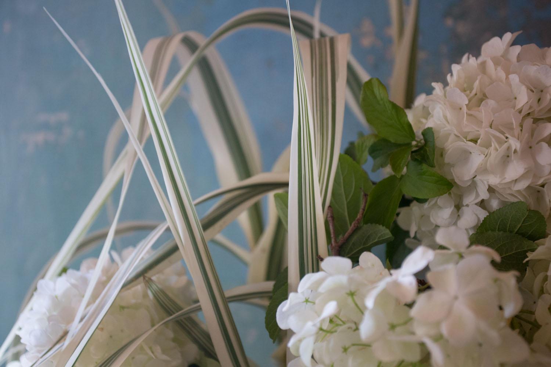 viburnum and grasses-7370.jpg