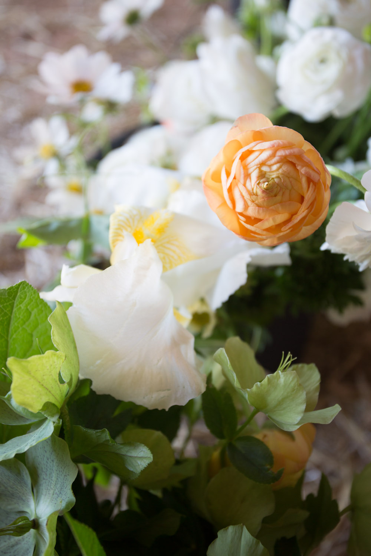 sweet olive farm wedding flowers-8285.jpg