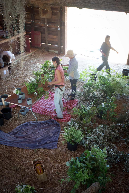 sweet olive farm wedding flowers-8298.jpg