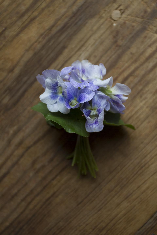 violet posey-3600.jpg