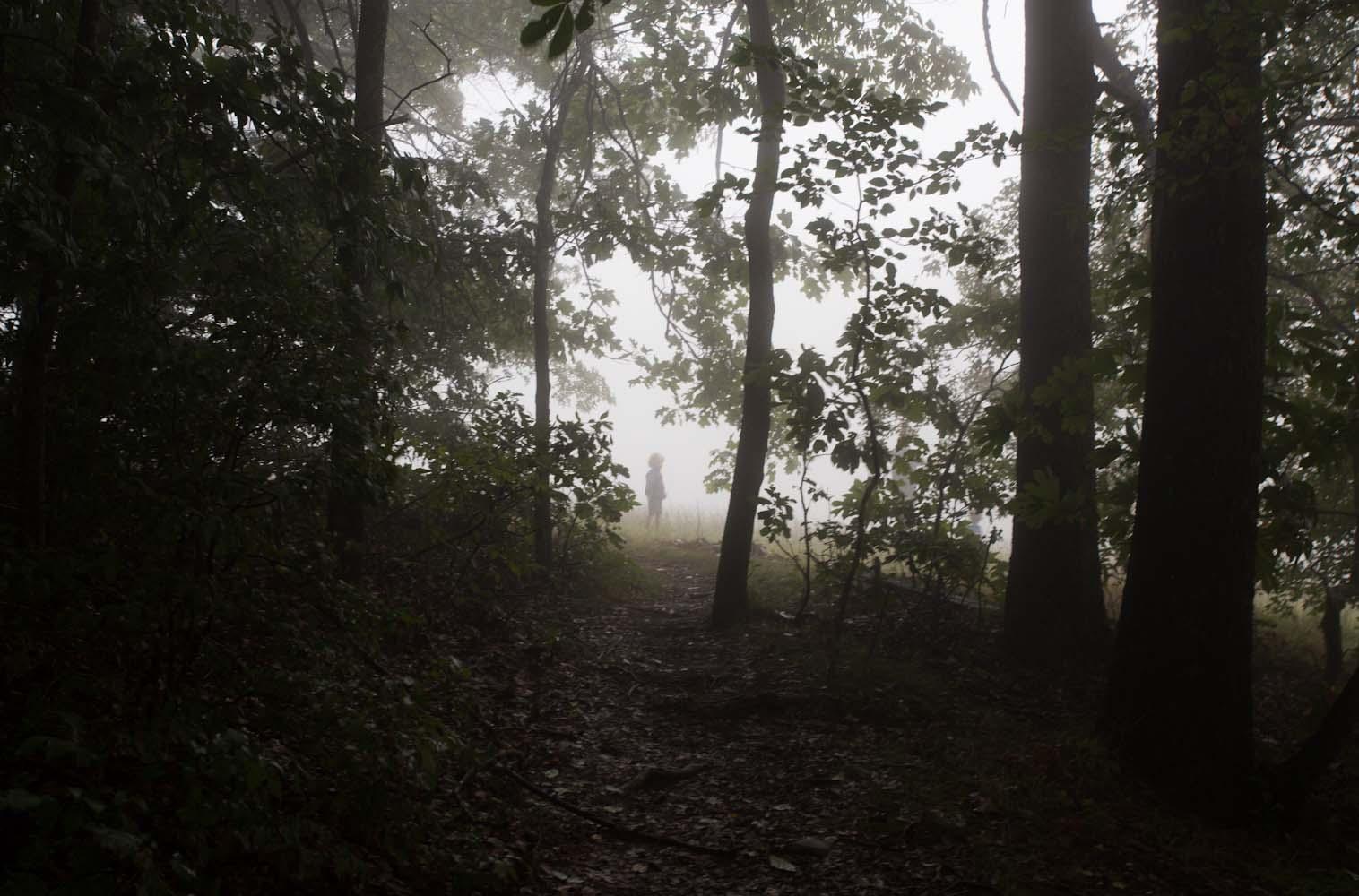 tate_hiking in fog-2278.jpg