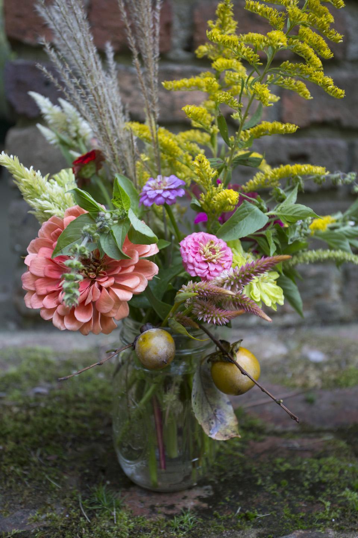 zinnias and fall color-7130.jpg