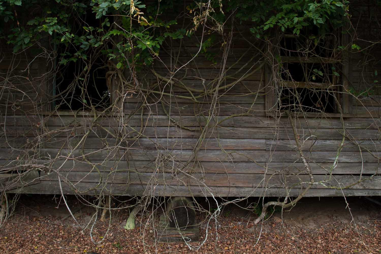 lakeland_shack-1739.jpg