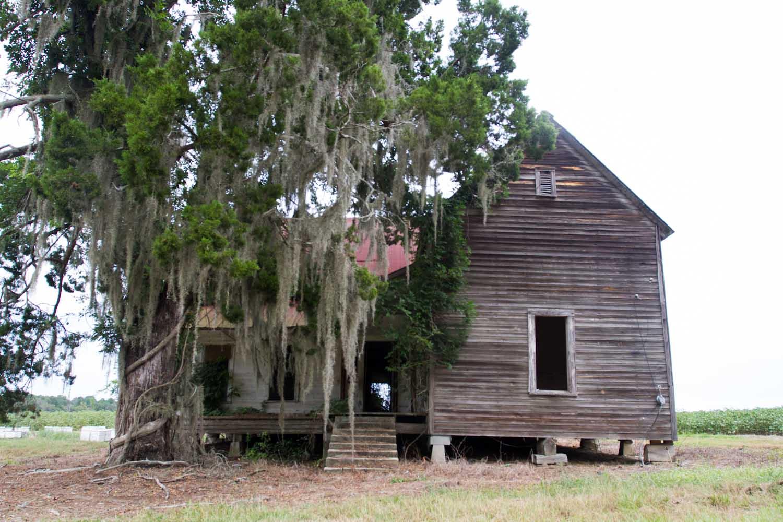 lakeland_shack-1730.jpg